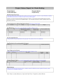Free Weekly Status Report Template for Excel 2007 – 2016